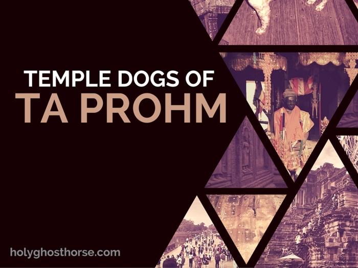 TempleDogsTaProhm